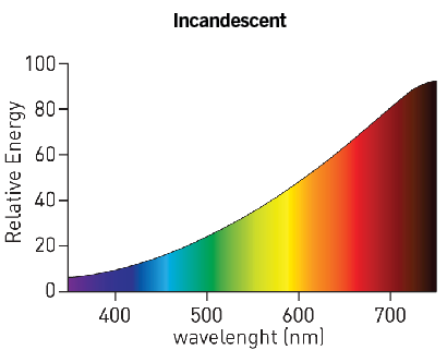 Spectrum of an incandescent lamp, which contains very little blue light.