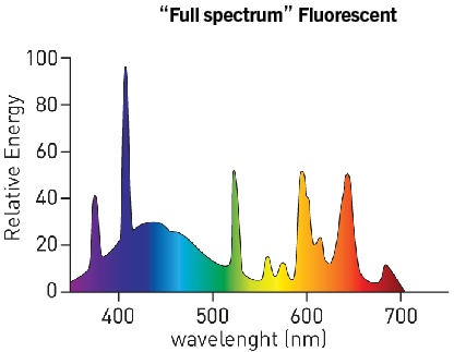 "Spectrum of a «full spectrum"" fluorescent light which is closer to the solar spectrum and contains a lot of blue light."