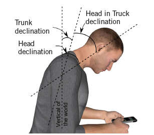 angle of rotation of the head relative to the trunk on digital devices