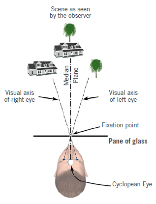 Varilux S Series™: 4D Technology™ personalised binocular calculation