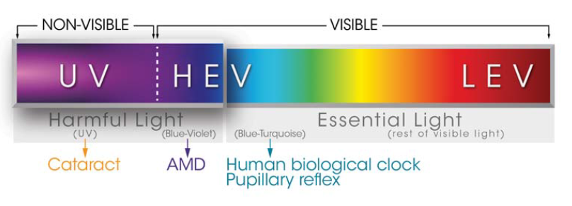 Visible and ultraviolet light spectrum