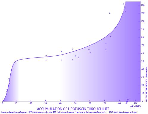 Lipofuscin Curve
